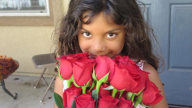 Simone Darden Roses